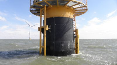 Marine Piling Wraps in Action